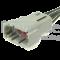 DTM04-08PA-PT Pigtail